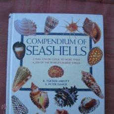Coleccionismo de moluscos: COMPENDIUM OF SEASHELLS- R. TUCKER ABBOTT, S. PETER DANCE- MALACOLOGÍA-CONCHOLOGÍA. Lote 51100888