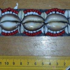 Coleccionismo de moluscos: PRECIOSA CORREA CINTURON CON 25 CONCHAS MARINAS CARACOLA EROSARIA CAPUTSERPENTIS GRANDES Y 48 CHICAS. Lote 172720685