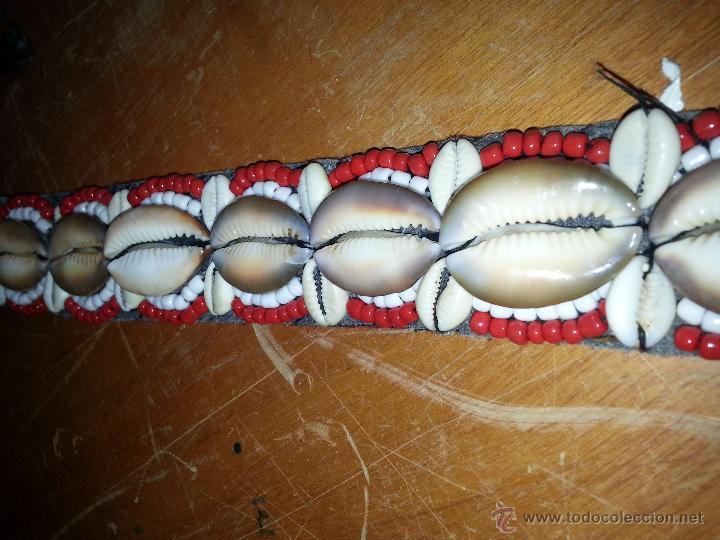 Coleccionismo de moluscos: preciosa correa cinturon con 25 conchas marinas caracola erosaria caputserpentis grandes y 48 chicas - Foto 3 - 172720685