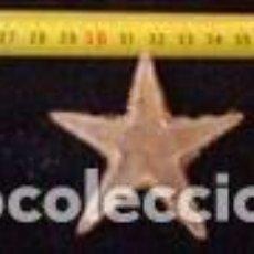 Coleccionismo de moluscos: ESTRELLA DE MAR 6 CM. Lote 71188089