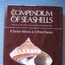 Coleccionismo de moluscos: COMPENDIUM OF SEASHELLS- R. TUCKER ABBOTT, S. PETER DANCE- MALACOLOGÍA-CONCHOLOGÍA-. Lote 99818891