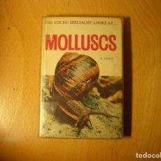 Coleccionismo de moluscos: LIBRO DE MALACOLOGIA. MOLLUSCS. AUTOR: H. JANUS. AÑO 1965.. Lote 143291930