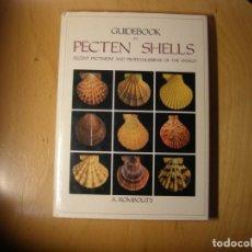 Collezionismo di molluschi: LIBRO DE MALACOLOGIA. GUIDE PECTEN SHELLS. AUTOR: A. ROMBOUTS. AÑO 1991.. Lote 143293382