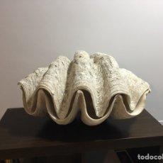 Coleccionismo de moluscos: CONCHA GIGANTE NATURAL, TRIDACNA GIGAS. Lote 144103978