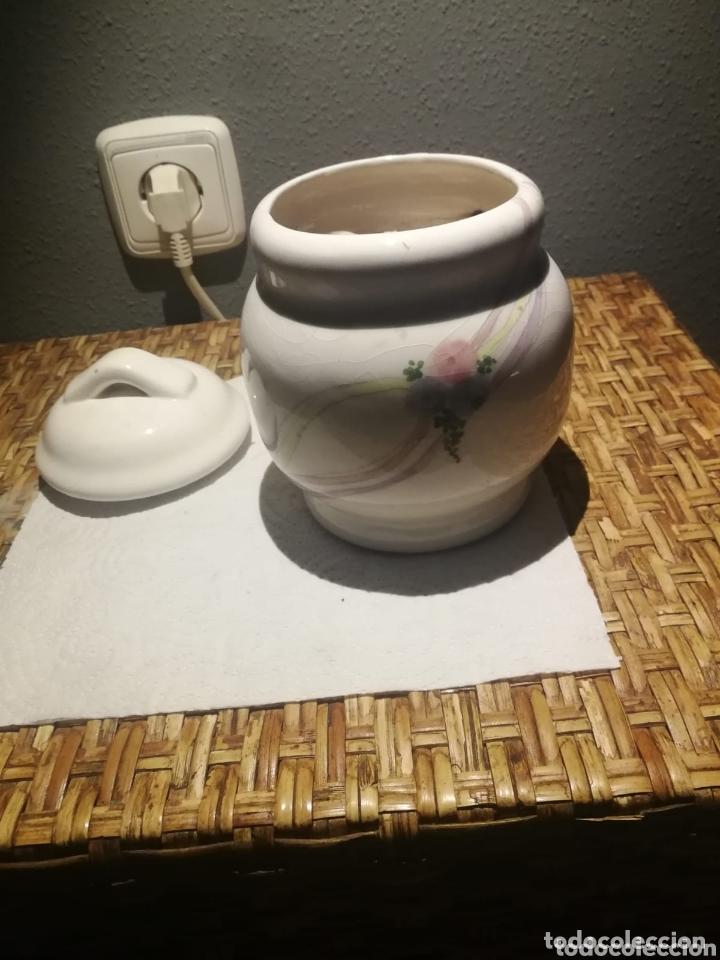 Coleccionismo de moluscos: Lotazo de caracolas del mar con tarro de porcelana - Foto 3 - 173626989