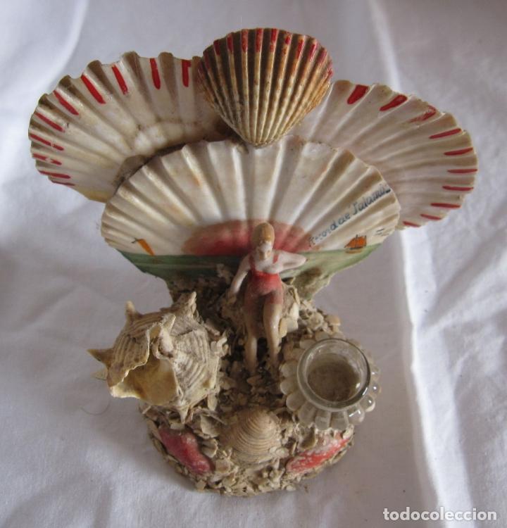 Coleccionismo de moluscos: TINTERO RECUERDO DE PALAMOS. BAÑISTA Y COMPOSICIÓN DE CONCHAS. 13 X 12 X 8 CM - Foto 5 - 178338487