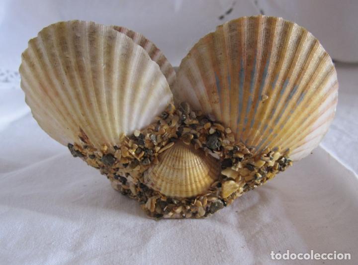 Coleccionismo de moluscos: TINTERO RECUERDO DE PALAMOS. DECORACIÓN CON BARCOS PINTADOS Y CONCHAS. 6 X 12 X 6 CM - Foto 4 - 178339223