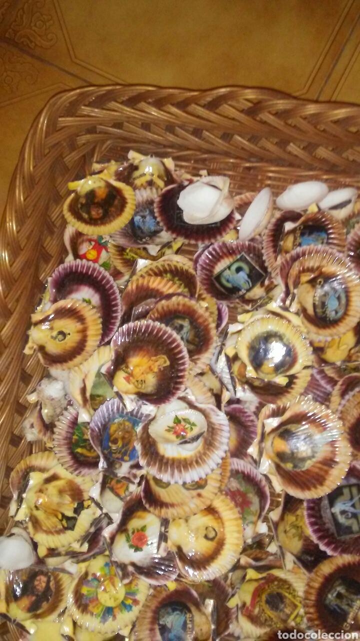 Coleccionismo de moluscos: Lote de 150 conchas decoradas .(ver fotos y leer descripcion) - Foto 2 - 186068102