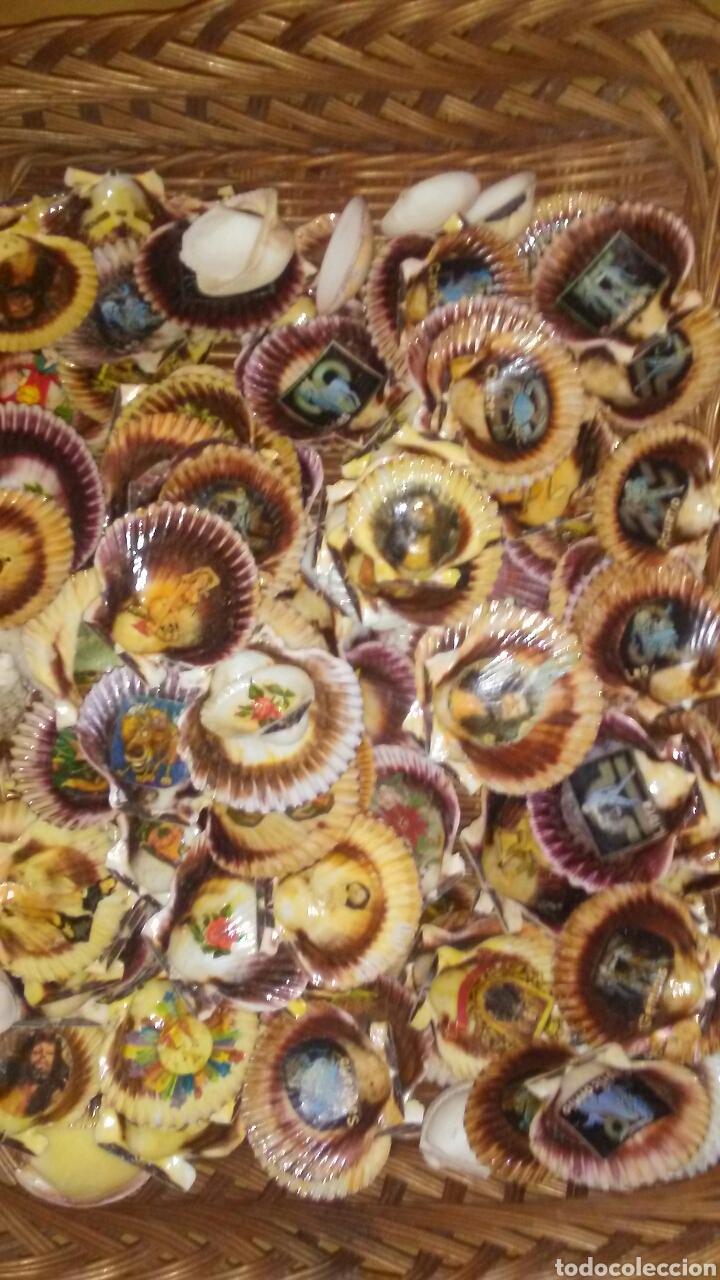 Coleccionismo de moluscos: Lote de 150 conchas decoradas .(ver fotos y leer descripcion) - Foto 4 - 186068102