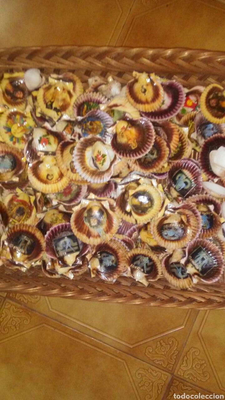 Coleccionismo de moluscos: Lote de 150 conchas decoradas .(ver fotos y leer descripcion) - Foto 5 - 186068102