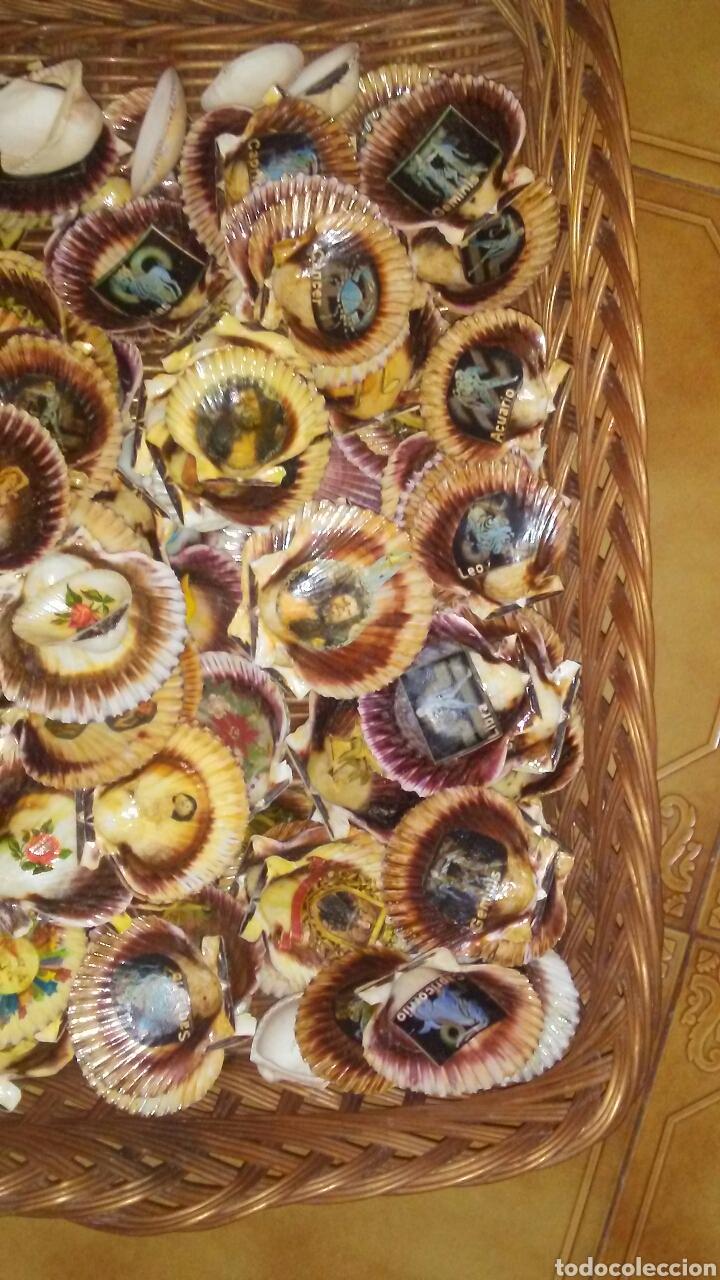 Coleccionismo de moluscos: Lote de 150 conchas decoradas .(ver fotos y leer descripcion) - Foto 6 - 186068102