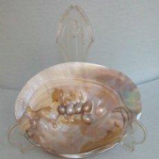 Coleccionismo de moluscos: PINCTADA MAXIMA CONCHA CON PERLAS BLÍSTER. Lote 187384043