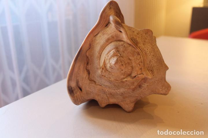 Coleccionismo de moluscos: GRAN CARACOLA, 21 CM DE LARGO, 18 CM DE ALTO, 15 CM DE ANCHO, PESO 1 KG CON 288 GRAMOS - Foto 4 - 226499505