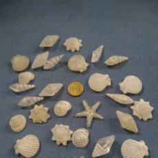 Coleccionismo de moluscos: FIGURILLAS MARINAS DE RESINA. Lote 236364170