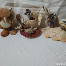Coleccionismo de moluscos: LOTE 3 FIGURAS DE MALACOLOGIA Y AMBIENTE MARINO (1 BUHO Y 2 PALILLEROS).. Lote 253553950