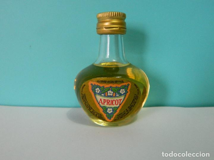 MINI BOTELLA APRICOT - AURUM BOTELLIN (Coleccionismo - Otras Botellas y Bebidas )
