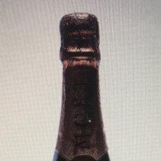 Coleccionismo Otros Botellas y Bebidas: BOTELLA. Lote 173579312