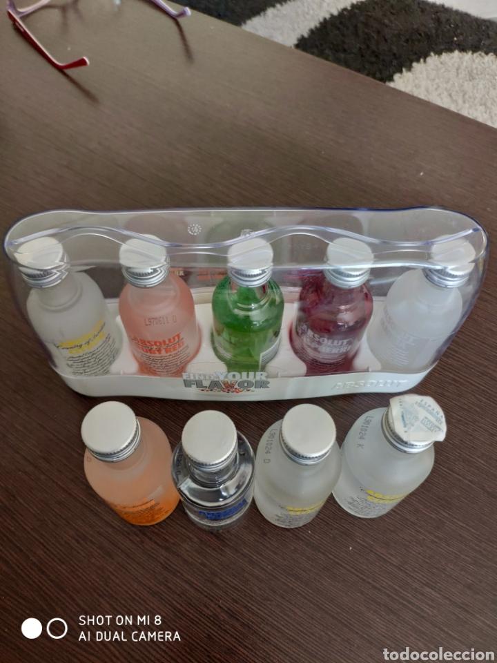 ABSOLUT MINIATURAS 9 BOTELLAS (Coleccionismo - Otras Botellas y Bebidas )