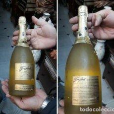 Coleccionismo Otros Botellas y Bebidas: BOTELLA FREIXENET GRAN CARTA NEVADA. Lote 221569393
