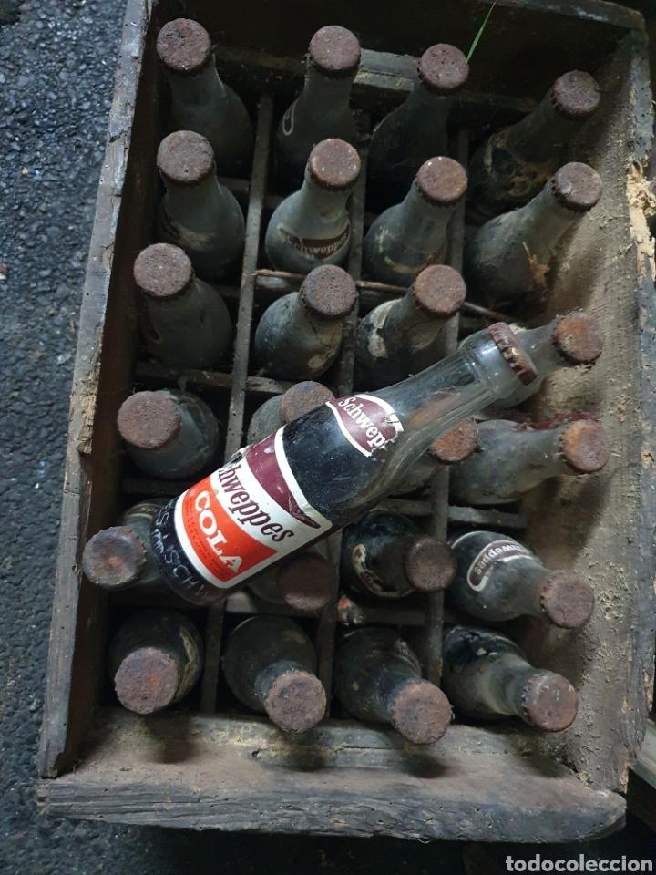 Coleccionismo Otros Botellas y Bebidas: Caja Schweppes Cola + 24 botellines - Foto 3 - 236243845