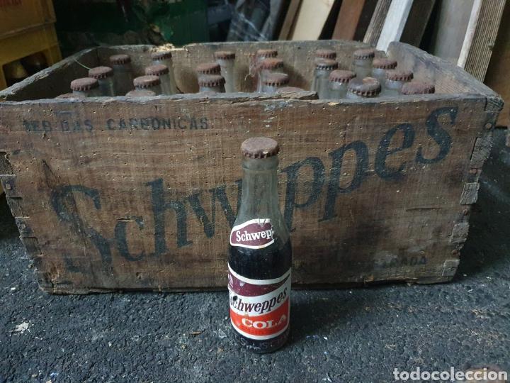 CAJA SCHWEPPES COLA + 24 BOTELLINES (Coleccionismo - Otras Botellas y Bebidas )