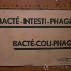Collectionnisme Papier buvard: PAPEL SECANTE. BACTE - INTESTI - PHAGE. BACTE - COLI - PHAGE.. Lote 37170278