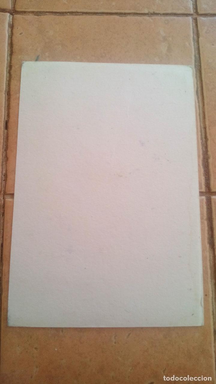 Coleccionismo Papel secante: PAPEL SECANTE - PELIKAN - Foto 2 - 169621724
