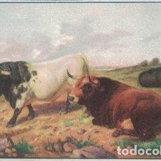 Collezionismo Carta assorbente: PAPEL SECANTE PUBLICIDAD ESCUELA DE TOROS CAMPESTRE. TAMAÑO: 14 X 8,8CM. PASECA-305. Lote 179954828