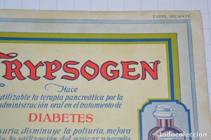 Coleccionismo Papel secante: Antiguos / Vintage -- Secante TRYPSOGEN -- ¡Raro y difícil, NUEVO! - ¡Mira fotos y detalles! - Foto 4 - 202766786