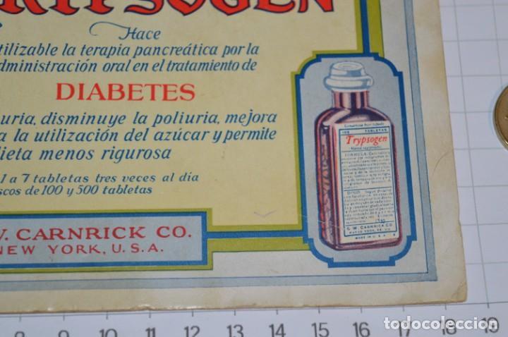 Coleccionismo Papel secante: Antiguos / Vintage -- Secante TRYPSOGEN -- ¡Raro y difícil, NUEVO! - ¡Mira fotos y detalles! - Foto 6 - 202766786