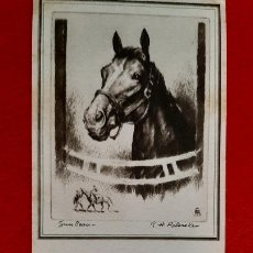 Collectionnisme Papier buvard: SECANTE PUBLICIDAD FARMACIA BUCHANAN CHEVROTET COMPANY 1947 CABALLO ORIGINAL SJ1. Lote 208662700