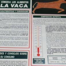 Coleccionismo Papel Varios: COLECCIONABLE1 HOJA: CONOZCA LOS ALIMENTOS. EN REVERSO, 4 RECETAS: LA VACA. Lote 144271366