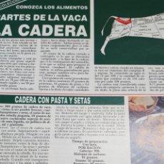 Coleccionismo Papel Varios: COLECCIONABLE1 HOJA: CONOZCA LOS ALIMENTOS. EN REVERSO, 4 RECETAS: CADERA DE VACA Y LENGUA. Lote 144271594