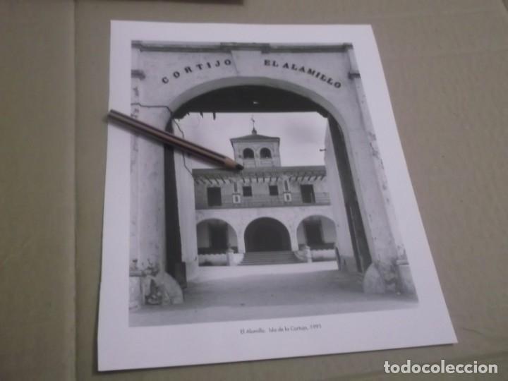 RECORTE LAMINA AÑOS 90 - SEVILLA , CORTIJO EL ALAMILLO - ISLA DE LA CARTUJA , AÑO 1991 (Coleccionismo en Papel - Varios)