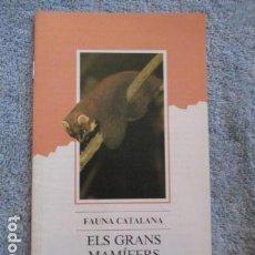 Coleccionismo Papel Varios: FAUNA CATALANA. ELS GRANS MAMIFERS TERRESTRES. GENERALITAT DE CATALUNYA. . Lote 157409402