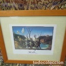 Coleccionismo Papel Varios: LAMINA REPRODUCCION ENMARCADA DE DALI. Lote 158392038