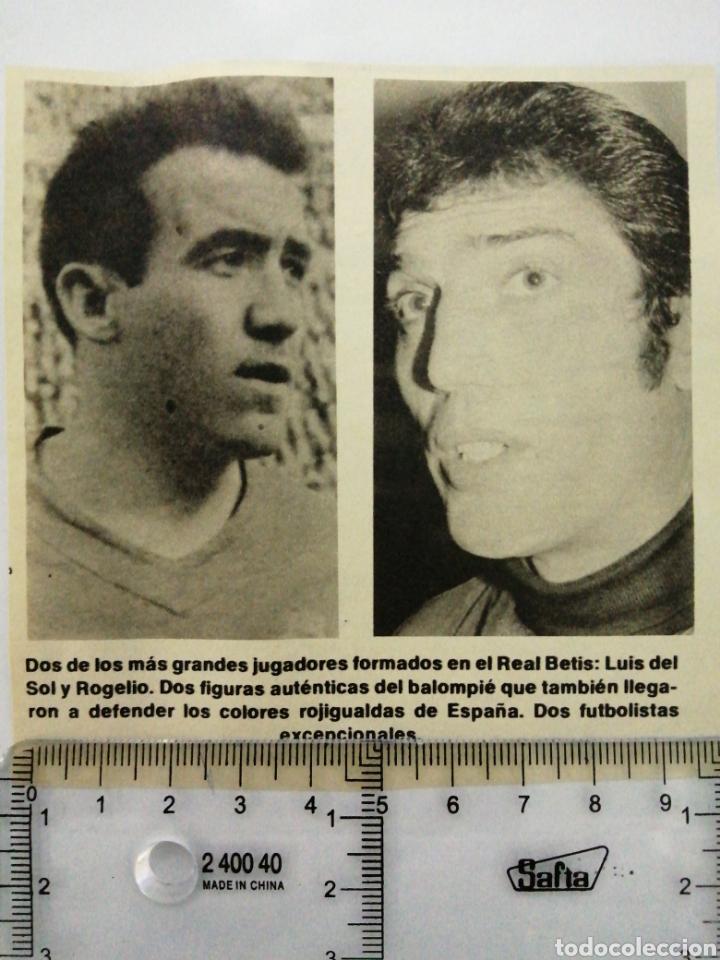 Coleccionismo Papel Varios: LUIS DEL SOL Y ROGELIO, DOS GRANDES JUGADORES DEL REAL BETIS. (RECORTE PRENSA ANTIGUO) - Foto 2 - 194239412