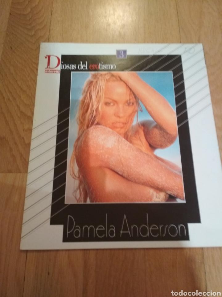 PAMELA ANDERSON INTERVIÚ SUPLEMENTO (Coleccionismo en Papel - Varios)