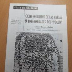 """Collectionnisme Papier divers: CICLO EVOLUTIVO DE LAS ABEJAS Y ENFERMEDADES DEL """"POLLO"""" VETERINARIO VALENCIA ROMERO FABRE 1970. Lote 206317471"""