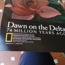 Coleccionismo Papel Varios: NORTH AMERICA IN THE AGE OF DINOSAURS. DAWN IN THE DELTA. NATIONAL GEOGRAPHIC SOCIETY.. Lote 208250217