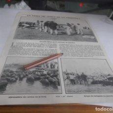 Coleccionismo Papel Varios: RECORTE AÑO 1905 - JEREZ(CÁDIZ)LA FERIA DE JEREZ.ATRAS BANDA MUNICIPAL VALENCIA,SENADORES MADRID. Lote 251448935