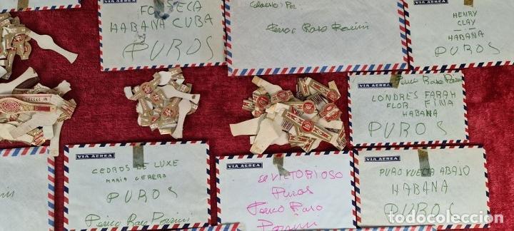 Coleccionismo Papel Varios: COLECCION DE 735 VITOLAS DE CIGARROS PUROS. VARIAS MARCAS. SIGLO XX. - Foto 3 - 261785115