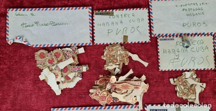 Coleccionismo Papel Varios: COLECCION DE 735 VITOLAS DE CIGARROS PUROS. VARIAS MARCAS. SIGLO XX. - Foto 4 - 261785115