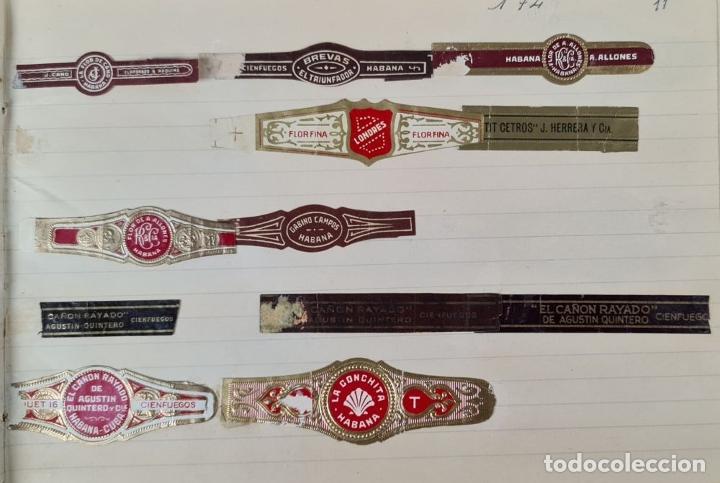Coleccionismo Papel Varios: COLECCION DE 735 VITOLAS DE CIGARROS PUROS. VARIAS MARCAS. SIGLO XX. - Foto 10 - 261785115