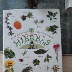 Coleccionismo Papel Varios: EL MUNDO SECRETO DE LAS HIERBAS - ALTAYA -. Lote 265937203