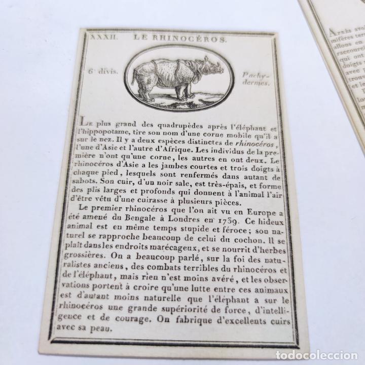 Coleccionismo Papel Varios: Colección de 43 cartas en estuche. La historia de los animales. París. Chez ant. Aug. Renouard. - Foto 9 - 268938964