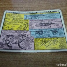 Coleccionismo Papel Varios: FICHA DISTEIN ANATOMIA ANIMAL VERTEBRADOS I 1971. Lote 295395118