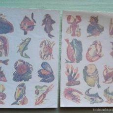 Pegatinas de colección: 2 CALCOMANÍAS ORTEGA, ANTIGUAS. TAMAÑO 11X15,5 CM. APROX. - SERIE P. Lote 56551695