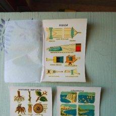 Pegatinas de colección: 3 CALCOMANÍAS ORTEGA, ANTIGUAS. TAMAÑO 11 X 15,5 CM. APROX. - SERIE P. N.. Lote 56552072