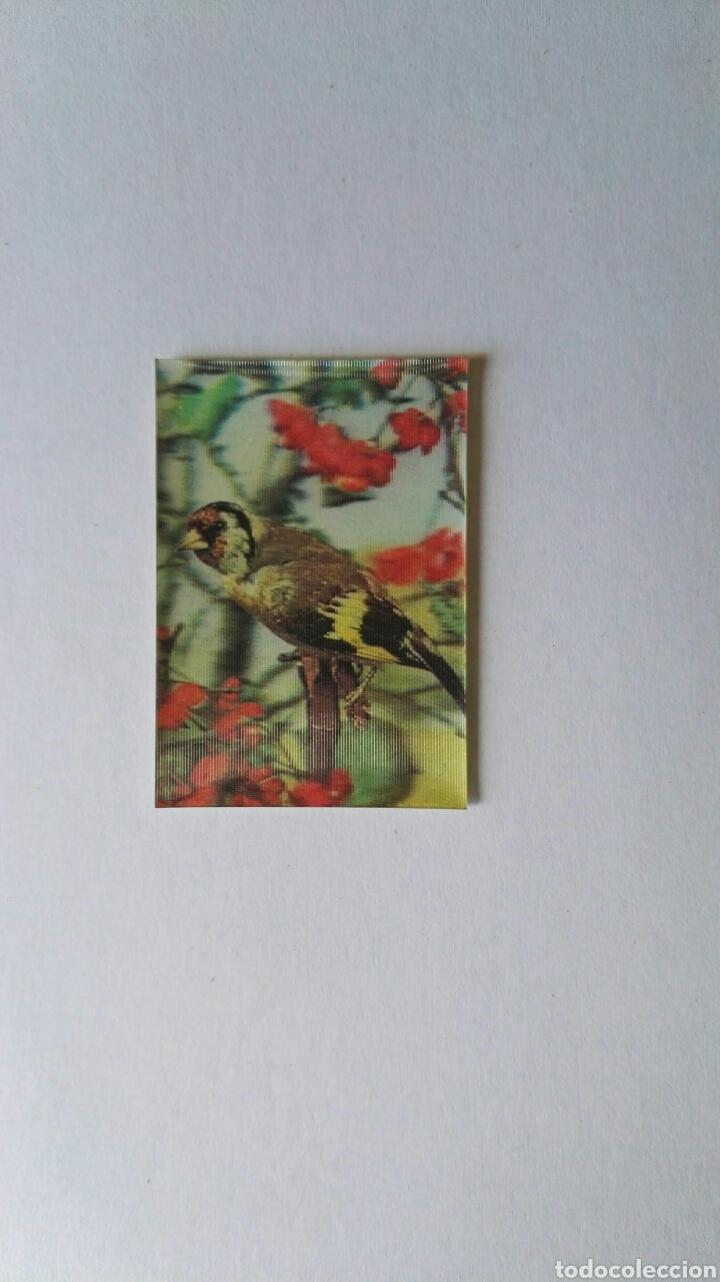 ANTIGUA PEGATINA PANRICO HOLOGRAMA TRANSPLASTIC N 30 JILGUERO (Coleccionismos - Pegatinas)